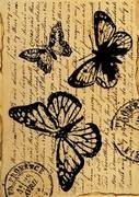 Stamperia Ris papir, Butterfly with words A4 (1 ark)